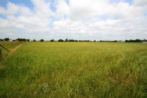 0 County Road 4004 Lot 7, Mabank, TX 75147 Property Photo