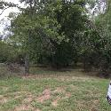 1200 Indigo Court Lot 398 Unit 398, Cedar Hill, TX 75104 - Image 1: Beautiful wooded property that is just waiting for a gorgeous home.