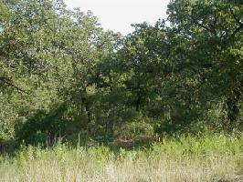 2111 Casino Lot 14, Nocona, TX 76255 Property Photos