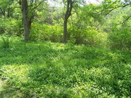 Thompson Heights Lot 36 Property Photo