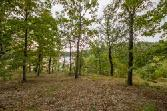 Neffwood Ln, Bella Vista, AR 72715 - Image 1: Land/Lot.