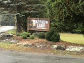 2508 Jean Danielson Dr, Greentown, PA 18426 - Image 1: Skyview sign