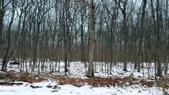 Lot 73 Stone Dr, Hawley, PA 18428 - Image 1: View from road to interior