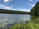 WOODLEDGE E LAKE Dr, Hawley, PA 18428 - Image 1: Lake view from Woodledge boat launch are