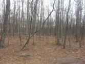 142 Evergreen Ct, Hawley, PA 18428 - Image 1: Lot View