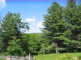 575 Parkers Glen, Shohola, PA 18458 - Image 1: 208 Acres with cabin