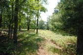 LOT 80-81 Ponderosa Pines Way, Hawley, PA 18428 - Image 1: Entrance into Lot 81
