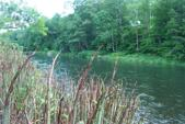 Lot #11 Airport Rd, Deposit, NY 13754 - Image 1: River