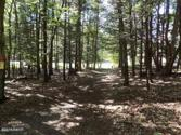 109 Wallenpaupack Dr, Lake Ariel, PA 18436 - Image 1: From the Lot to Wallenpaupack Drive!
