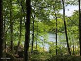 801 Corral Ct, Lords Valley, PA 18428 - Image 1: Lake Life