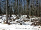 3 & 4 MAPLE RD, Blakeslee, PA 18610 - Image 1: Maple Rd_ Lots_3 & 4_Main