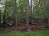 69 Skyline Drive, Canadensis, PA 18325 - Image 1: Land in Mountainhome 003