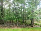 Lot 80D Lookout Point Dr, Canadensis, PA 18325 - Image 1: IMG_20180905_134447019~2