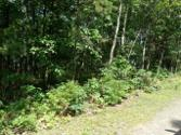 #7222 Saw MIll Rd, Long Pond, PA 18334 - Image 1: lot