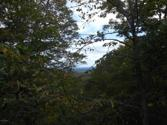 Lot 36 Lake In The Clouds Rd, Canadensis, PA 18325 - Image 1: Amazing Views