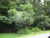 Lot 5410 CLEARVIEW DR, Long Pond, PA 18334 - Image 1: IMG_2909