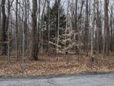 Lot 70, King Arthur Rd, Pocono Lake, PA 18347 - Image 1: IMG_20200212_134735
