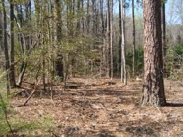 Lot C-65 Summer Place, Macon, NC 27551 Property Photo