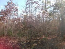 lot 26 St. Tammany Drive, Bracey, VA 23919 Property Photo