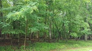 0 OLD MILL DR Lot #24 Property Photo