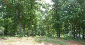 Lot 4 Heather LN, Huddleston, VA 24104 Property Photo