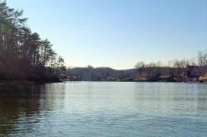 LOT 49 WATERSIDE DR, Goodview, VA 24095 Property Photo