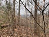 Lot 50 Griffin Trail, Albany, KY 42602 - Image 1: griffin trail 50