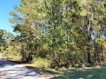 Lot 14 Witty Drive, Summerton, SC 29148 - Image 1: Main View