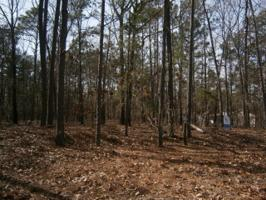 01 Lot 23, Santee, SC 29142 Property Photos