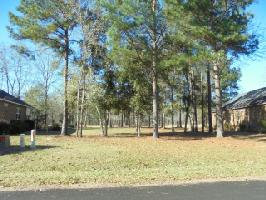 814 Bentwood, Manning, SC 29102 Property Photo