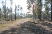 Tract #1-31 Private Road Road 6026, Brookeland, TX 75931 - Image 1