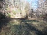 Tbd Troublesome Hollow Road, Bluff City, TN 37618 - Image 1: IMG_4571
