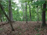 0 Lakeside Lot A-1, Kingsport, TN 37664 - Image 1
