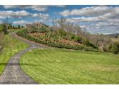3070 Rocky Springs Rd, Piney Flats, TN 37686 - Image 1