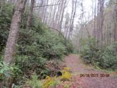 0 Heaton Branch Road, Butler, TN 37640 - Image 1: ROW to property