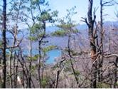 849 Myrtle Drive, Butler, TN 37640 - Image 1: 64.48 ACRES, LAKE & MOUNTAIN VIEWS!