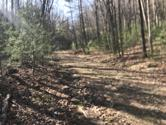 0000 Of Little Dry Run Road, Mountain City, TN 37683 - Image 1: IMG_0347