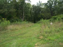 0 LAKE POINTE DRIVE, LOT 8 Lot 8, ABINGDON, VA 24211 Property Photo
