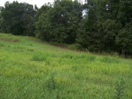 0 LAKE POINTE DRIVE, LOT 39 Lot 39, ABINGDON, VA 24211 Property Photo