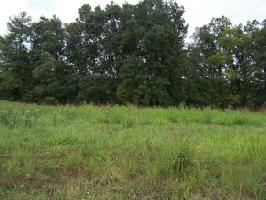0 LAKE POINTE DRIVE, LOT 37 Lot 37, ABINGDON, VA 24211 Property Photo