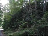 121 Banjo Ridge Road, Butler, TN 37640 - Image 1: 121 Banjo Ridge Lot 1