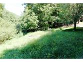 1835 Little Dry Run Road, Butler, TN 37640 - Image 1: GREAT BUILDING SITE