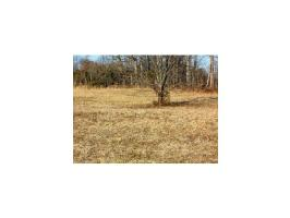105 Bill Road Lot 2, Piney Flats, TN 37686 Property Photos