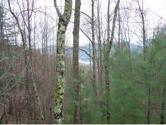 TBD RD Campbell Road, Butler, TN 37640 - Image 1: Photo 1