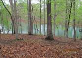 230 Yardarm Court Lot 15, Stokesdale, NC 27357 - Image 1: Waterfront lot! AMAZING HOMESITE!