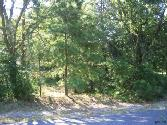Lot 209 Holly Trail East, Holly Lake Ranch, TX 75765 - Image 1