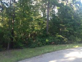 15218 Maple Leaf Court (lot 28), Tyler, TX 75707 Property Photo
