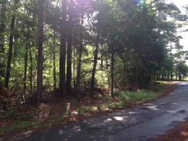 Lot 43 WHIPPOORWILL LANE, Flint, TX 75762 Property Photo