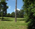 4-44,45 Greenbriar, Holly Lake Ranch, TX 75765 - Image 1: View of 13th hole from back of lot.
