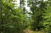 70.58 AC Pleasant Hill Rd, ALLONS, TN 38541 - Image 1: Main View